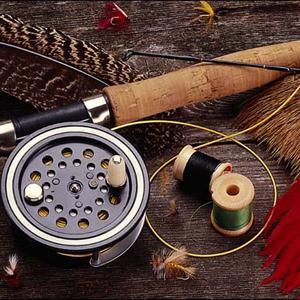 Охотничьи и рыболовные магазины Домбаровского