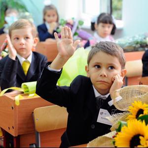 Школы Домбаровского
