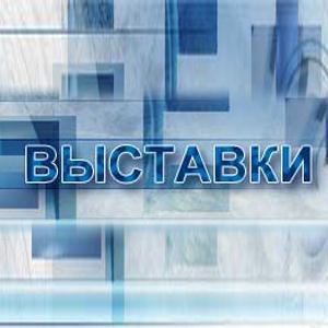 Выставки Домбаровского